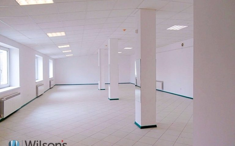 Attractive commercial and service premises for rent.