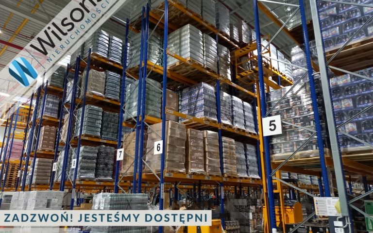 A + class warehouse 1500 m2 only PLN 15 / m2 in Marki
