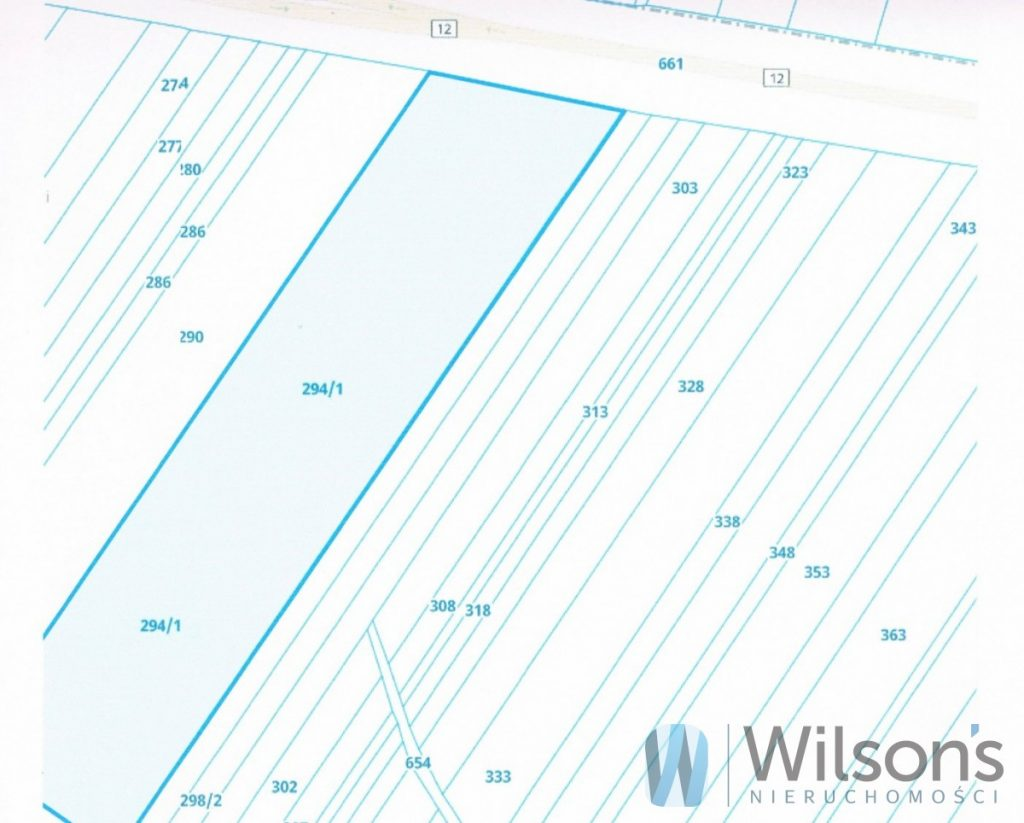 Beautiful construction and investment plot with conditions